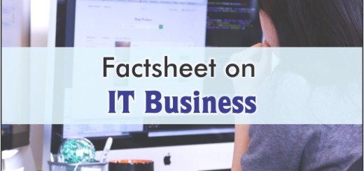 factsheet on it business