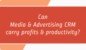 Can Media & Advertising CRM carry profits and productivity