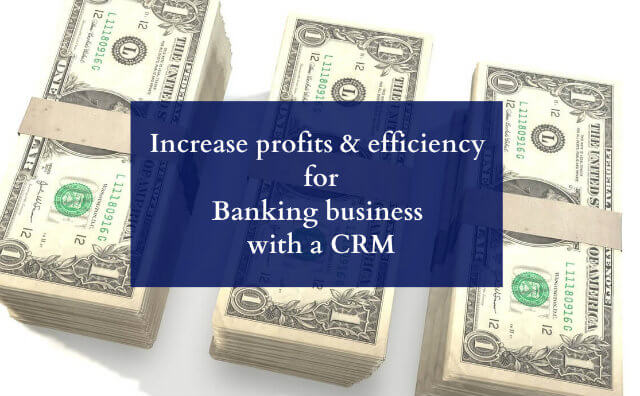 Increase Profits And Efficiency For Banking Business With A CRM
