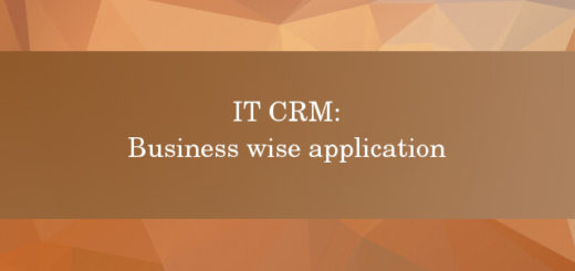 IT CRM business wise application
