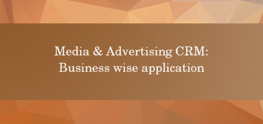 Media and Advertising CRM business wise application