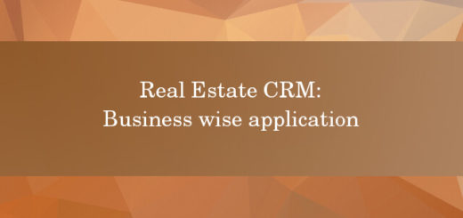Real Estate CRM business wise application
